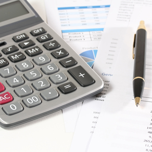 Everything about accounting ledgers